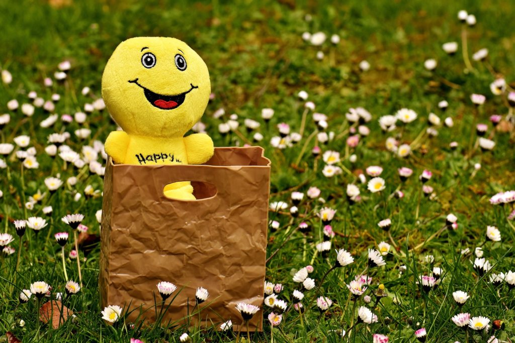 A custom paper bag with a smiley stuffed toy inside placed on the ground surrounded with flowers.